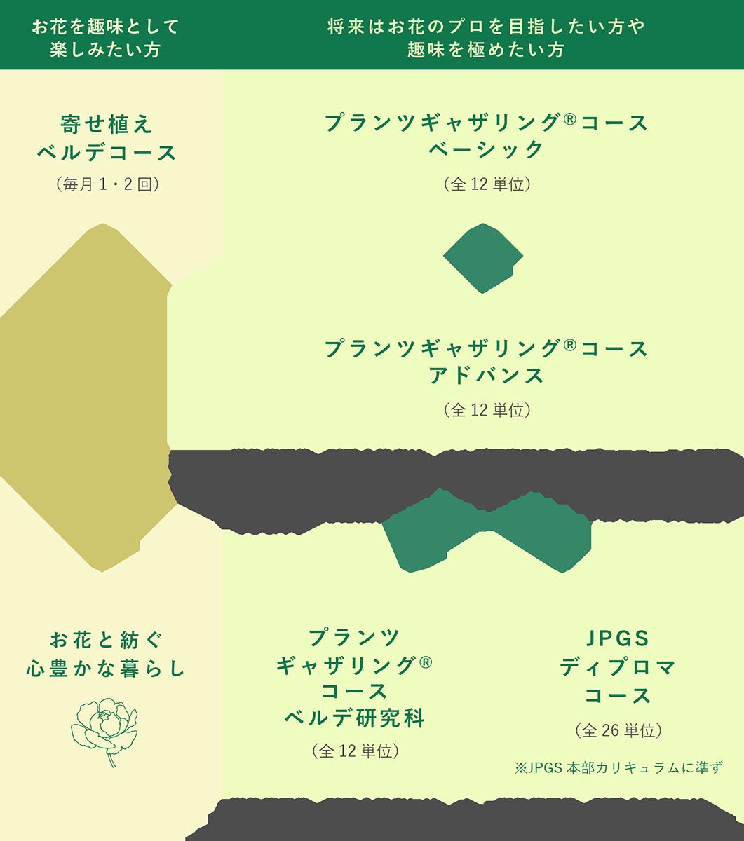 各コースの進み方のイメージ