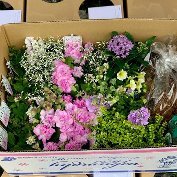 花材の到着と管理
